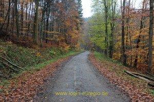 Hemingway Trail